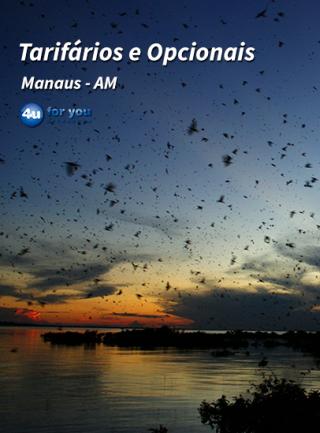Manaus - Serviços
