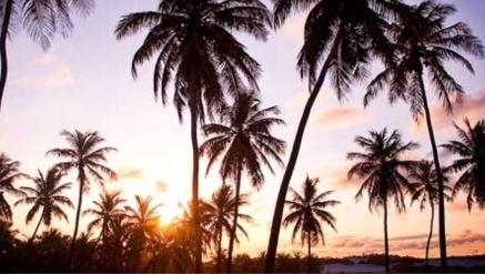 Resorts da Bahia