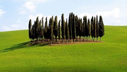 Toscana Monumental e Paisagística+Liguria e Umbria
