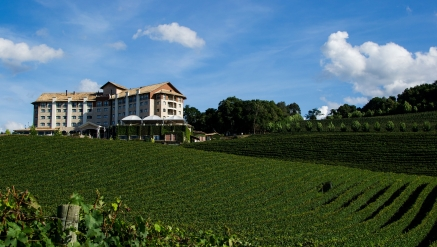 Wine South America - 23 a 27/09/2020